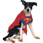 ハロウィンSPECIAL Superman Dog Costume